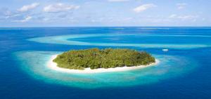 ostrov